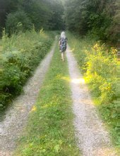 Lesný chodník