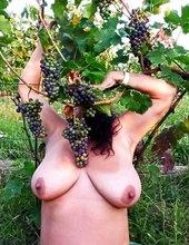 Ke sklípku patří i vinohrad