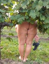 Tour de vinice--odpočinek