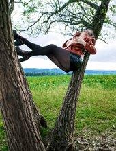 na větvi