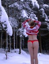 Zimní  les je nejkrásnější :-)