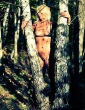 medzi brezami