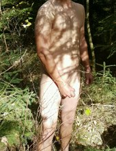 prochazka v lese