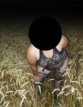 v pšenici