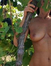 Vo vinohrade - 2 😉