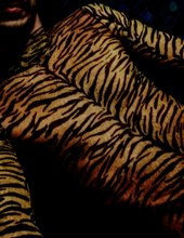The Tigerman