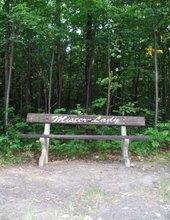 Opuštěná lavička v lese
