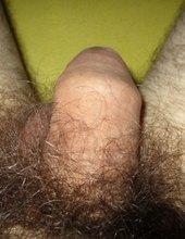 Můj penis