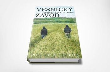 Odváží se vydat tvrdě erotický gay román?